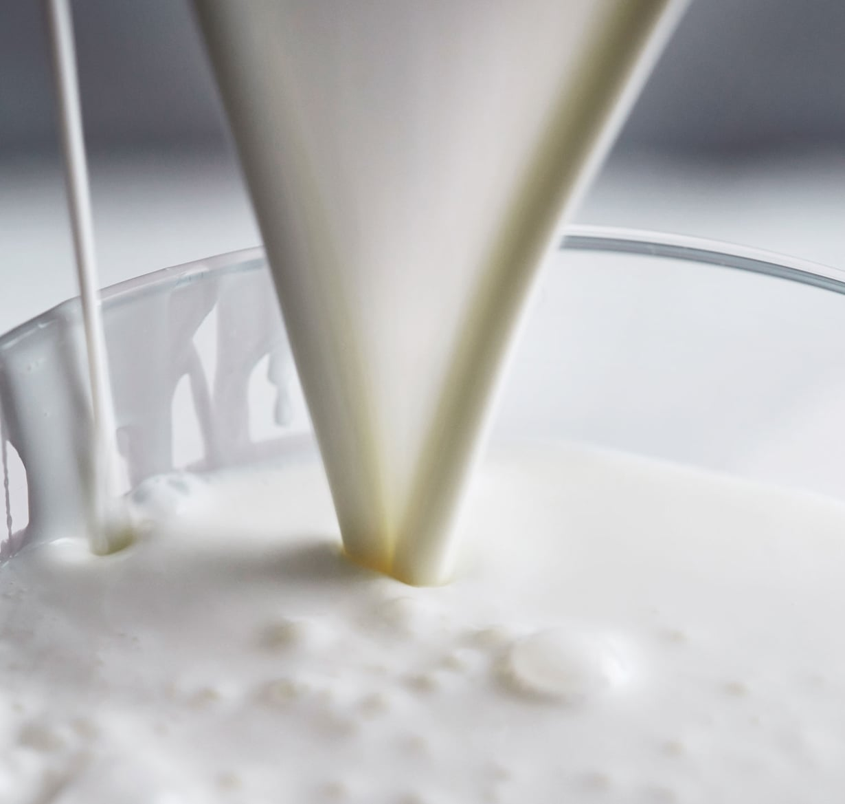Taviksien tavis eli piimä on yhtäkkiä kuuma trendiraaka-aine. Kuva: Panu Pälviä