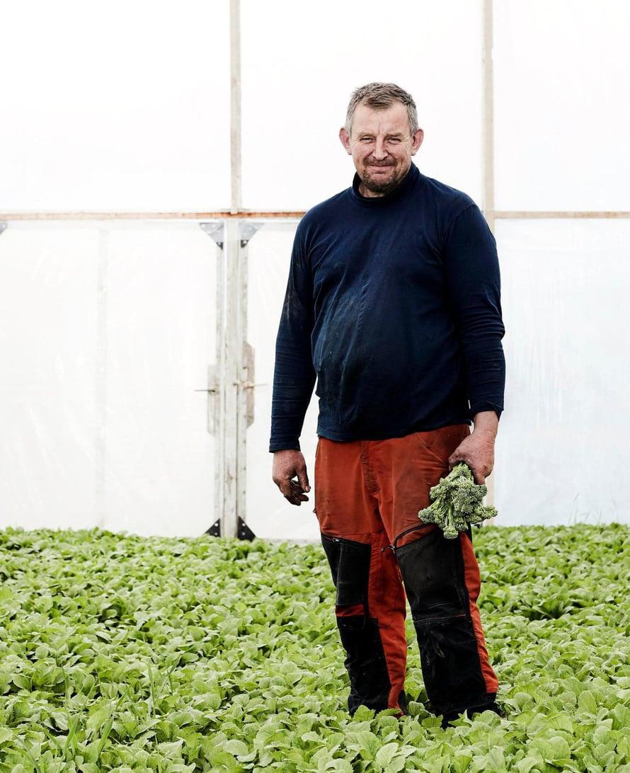 Viljelijä Pauli Lindström kasvattaa vantaalaisella tilallaan muun muassa erikoiskaaleja.