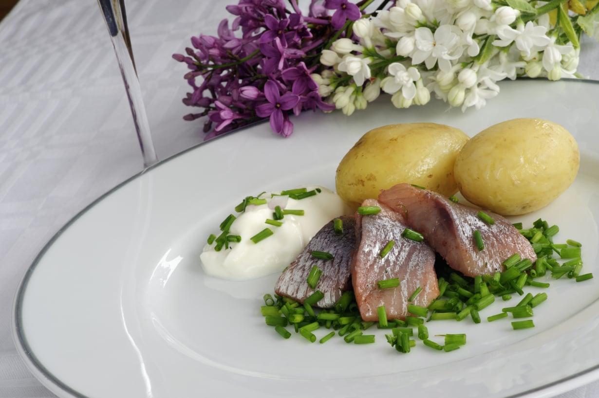Uudet perunat, silli ja sipuli. Suomen suven maittavin makukimara. Kuva: Istockphoto.